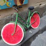 Svensk cykling svarar Cyklistbloggen